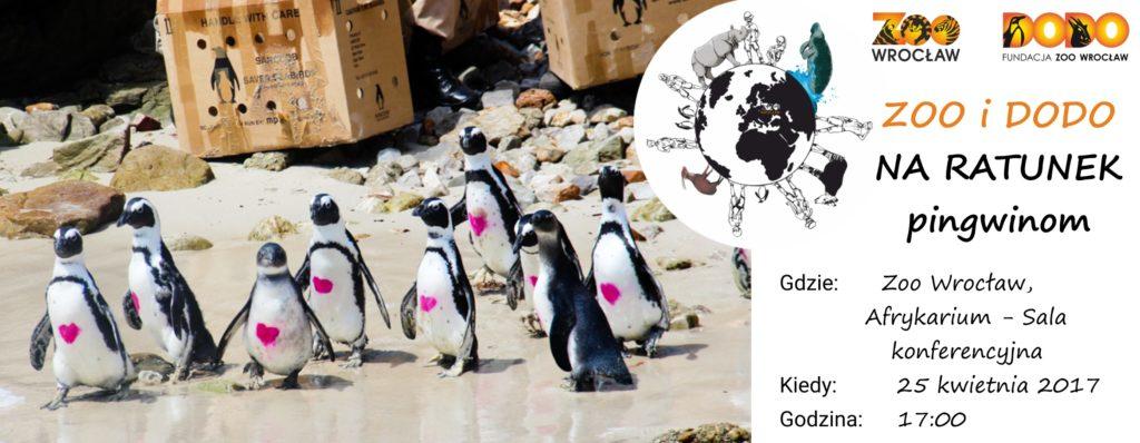 Zoo i Dodo na ratunek pingwinom