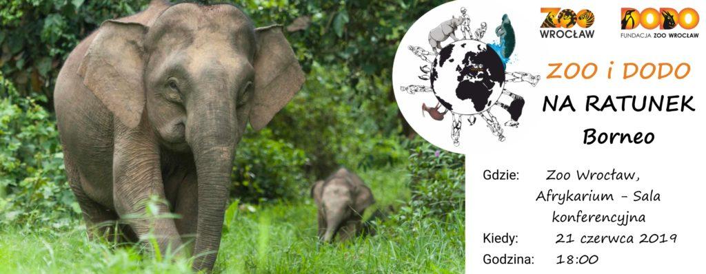 Zoo i Dodo na ratunek Borneo
