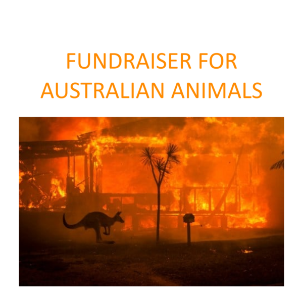 Fundraiser fo Australian animals affected by the bushfires