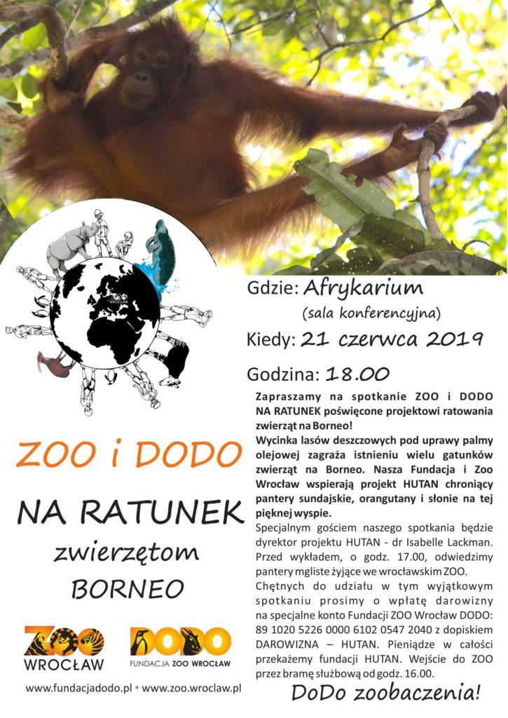 Plakat Zoo i Dodo na ratunek Borneo 21.06.2019