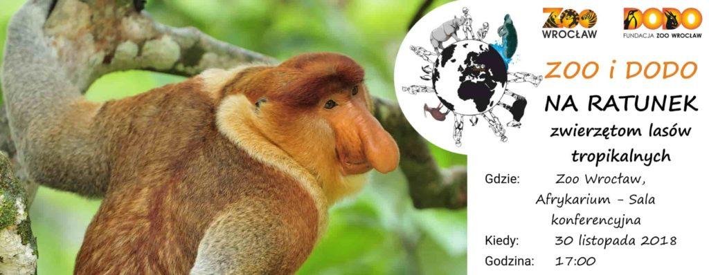Zoo i Dodo na ratunek – uwaga na olej palmowy!