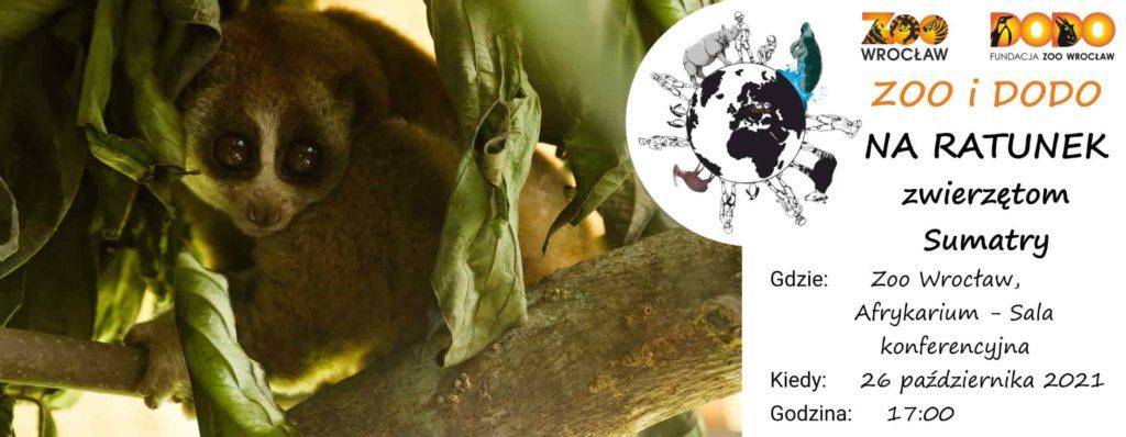 Zoo i Dodo na ratunek zwierzętom Sumatry